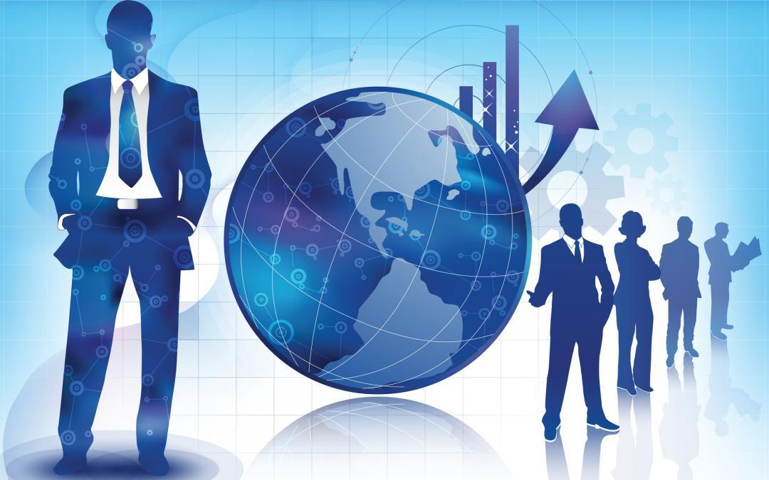 Business for Sale – IT Analysis and Litigation Consulting Firm