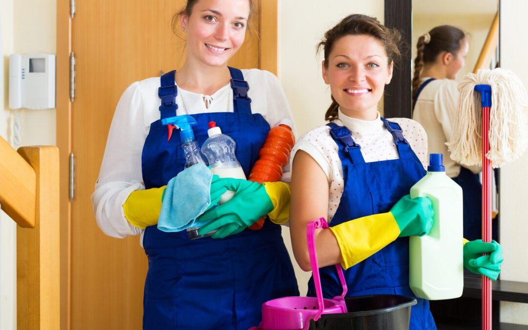 Business for Sale: Cleaning Services Company